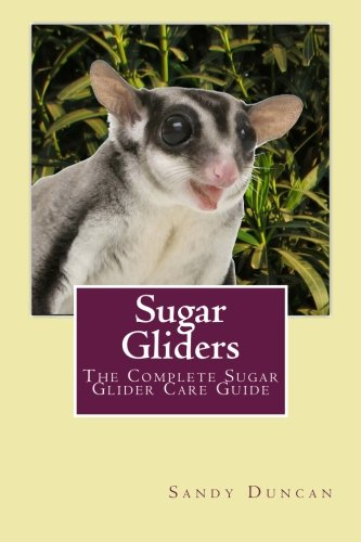 Sugar Gliders: The Complete Sugar Glider Care Guide