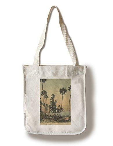 (Lantern Press Shoreline View of Indian River with Palm Trees, Florida - Vintage Halftone (100% Cotton Tote Bag - Reusable))