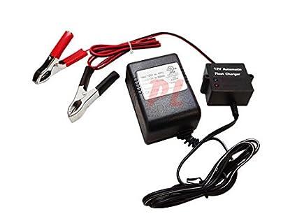 Amazon.com: 12 V Indicador de flotador Cargador de batería ...
