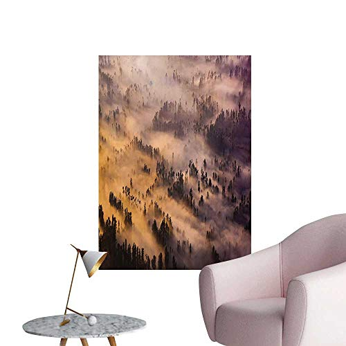 (Anzhutwelve Mystic Wall Sticker Decals Sunrise Over a Foggy Mystic Forest Summer Morning Time Wildlife Scenic PictureYellow Brown W32 xL48 The Office Poster)