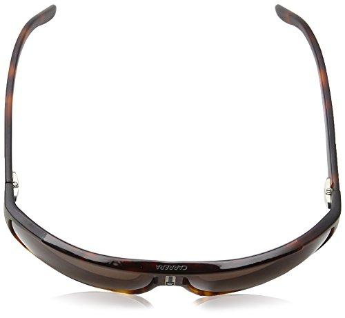 Carrera - Lunettes de soleil - Homme marron Tartaruga Bionda/Marrone taille unique
