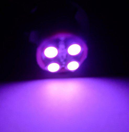 Pink Led Lights 194 - 9