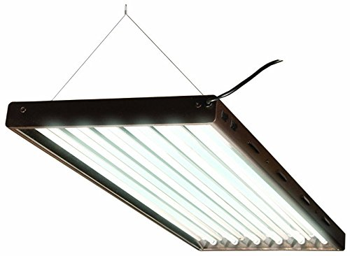 Agrobrite Designer T5, FLP46, 324W 4 Foot, 6-Tube Fixture with Lamps (Structures 6 Light)