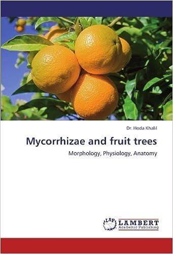 Mycorrhizae And Fruit Trees Morphology Physiology Anatomy Hoda