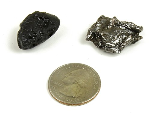 Genuine Meteorite (7-9 grams) from Campo del Cielo in Argentina. BONUS: Tektite (2.5-4.5 grams), Certificate of Authenticity, Educational Info Cards and Display Box, Dancing Bear Brand