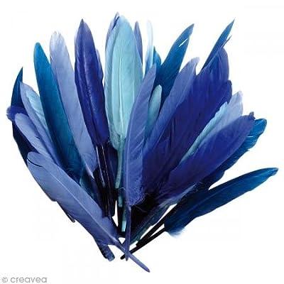 1 sachet de 10 grammes de Plumes d'indien - Camaïeu Bleu