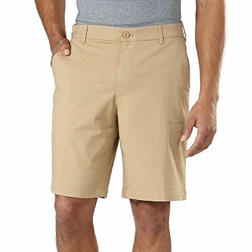 IZOD Men's Performance Athletic Short Choose Size & Color (34, Tan)