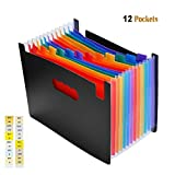 12 Pockets Expanding Files Folder, High Capacity Multicolor Accordion with Colored Tab, Plastic Expandable Folder Organizer for Office, School, Home - Letter Size