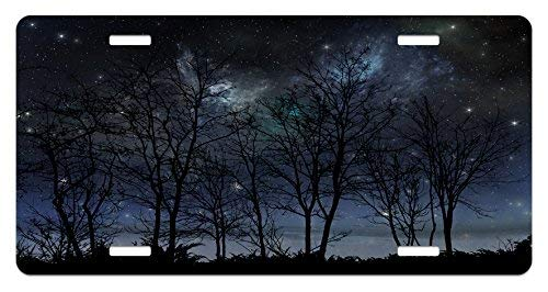 FloralFlames Personalized Novelty License Plates Aluminum, Night Sky Deep Spooky Forest Branches Cosmos Galaxy Customized Decorative Front Car Tag for US Vehicles 4 Holes -
