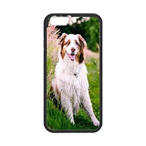 Australian Shepherd Dog Flowers Meadow Grass Nature Ilike IPhone 6 Plus Cases, Luxury Case for Iphone 6 Plus Case Funny Design Tyquin - Black