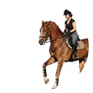 alfombrilla de ratón Mujer morena galope de caballo de la castaña aislado en blanco - ronda - 20cm