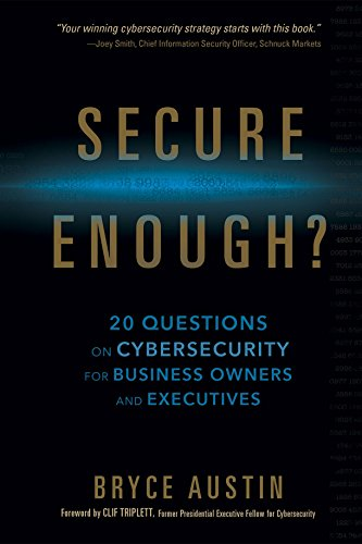 Secure Enough?: 20 Questions on Cybersecurity for Business Owners and Executives