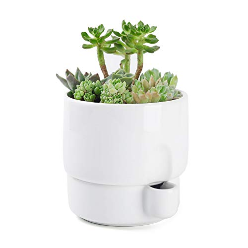 Greenaholics Plant Pots - 5.8 Inch Self Watering Planter with Water Container, Combine Design, for Small Plant, White