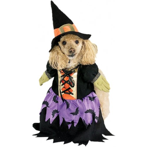 Bewitched Pet Costume]()