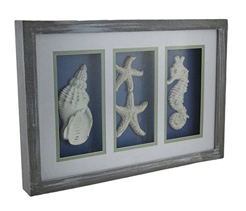 Seashell Statue - Zeckos Triple Framed Seashell, One Size, Ocean Inspired Shadowbox