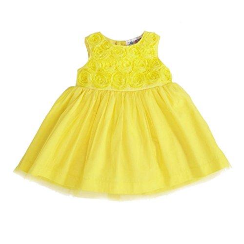 [Torio Girls' Spring Blossom Garden Dress 0/3 Months Bright Yellow] (Baby Animal Dresses)