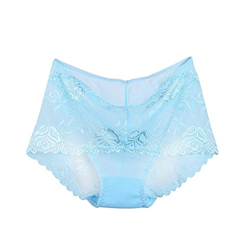 AHZZY Sexy Women Lace Panties Underwear Seamless Briefs Hipster Bikini Plus Size Size 2X-Large (Sky Blue)