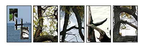 Creative Letter Art - The Lake Photo prepack Includes 5 Unique Nature Themed 4x6 Color Alphabet Phototgraphs, (Baseball Alphabet Letter)