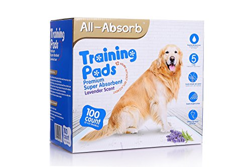 All-Absorb Premium Training Pads, Lavender Scent, 22 by 23-Inch, 100 Count