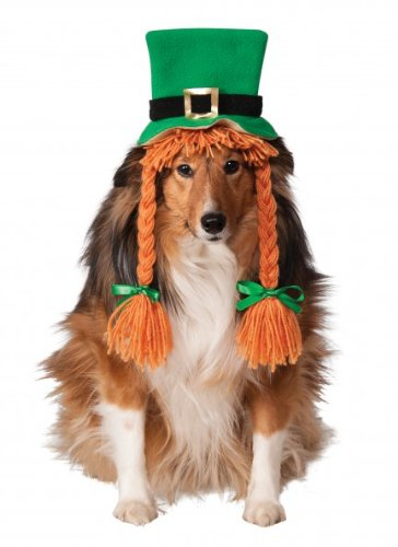 Rubie's St. Patty's Day Girl Pet Costume Hat with Braids, Medium/Large -