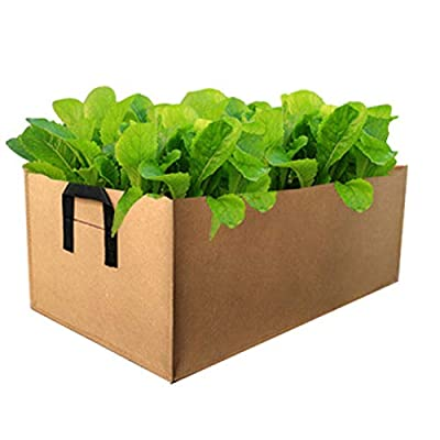 RollingBronze Planter Bags, Growing Bag Rectangle Container Pot Planter Pouch Root for Garden Vegetables Home Planting Potato Carrot Tomato Sprouts: Home & Kitchen