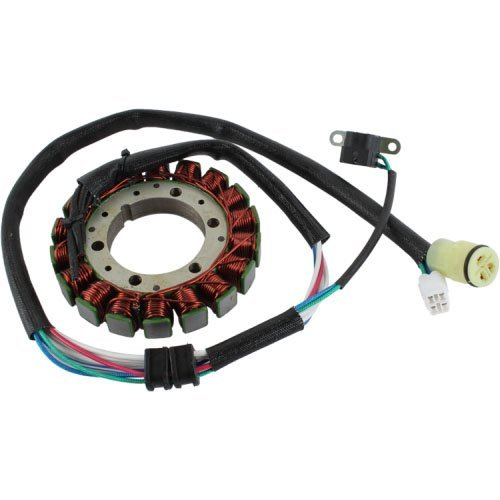 DB Electrical AYA4031 Stator Coil For 350 Yfm350R Yamaha Raptor 04 05 06 07 08 09 10 11 12 13 2004 2005 2006 2007 2008 2009 2010 2011 2012 2013,Yfm350X Warrior 02 03 04 2002 2003 2004