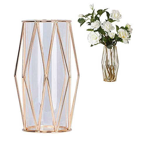 Perfuw Glass Flower Vase with Geometric Metal Rack Stand, Crystal Clear Terrariums Planter Bud Glass Vases for Flowers Hydroponics Plant, Centerpiece for Home Office Wedding - Champagne Gold ()