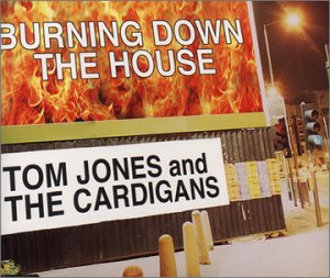 Burning Down The House - Cardigan Polar