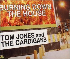 Burning Down The House - Cardigan Polar