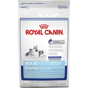 Royal Canin Maxi Starter Mother and Babydog, Dry Dog Food Formula, 26-Pound Bag by Royal Canin USA, Inc.*