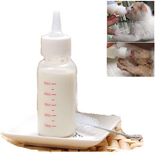 Newborn Puppy Feeding - PEIUJIN 50ml Newborn Pet Small Dog Puppy Cat Kitten Rabbit Milk Nursing Care Pup Milk Feeding Bottle Set Milk Feeder (Set A 50ml)