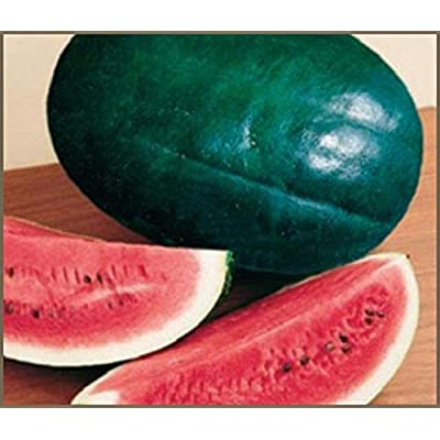 Black Diamond Watermelon Seeds (50 Seeds) : Garden & Outdoor