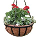 Border Concepts 72188 Wrought Iron Traditional Hanging Basket, 16-Inch For Sale