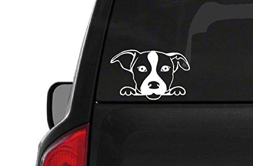 Peeking Jack Russell Terrier (A27) Vinyl Decal Sticker Car/Truck Laptop/Netbook Window