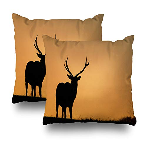 Suesoso Decorative Pillows Case 18 x 18 Inch Set of 2, Silhouette Large Red Stag Golden Morning Sky Throw Pillowcover Cushion Decorative Home Decor -