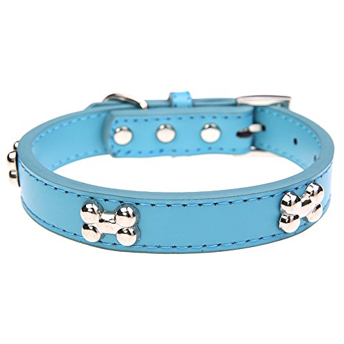 Leather Dog Collar with Bone Charm Blue M 11-14 inches 40 cm