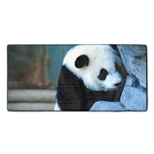YSKHDBC Microfiber Kitchen Pool Towels for Kids - Cute Panda Wallpaper ()