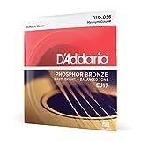 D'Addario Phosphor Bronze Acoustic Guitar Strings, Medium, 13-56 (EJ17)