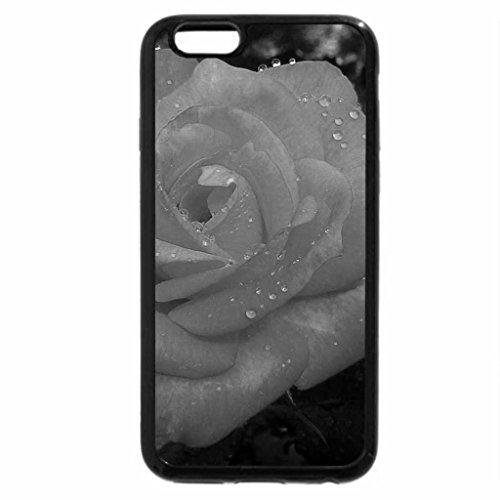 iPhone 6S Plus Case, iPhone 6 Plus Case (Black & White) - Circus rose