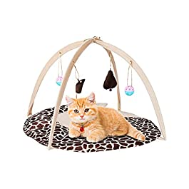 PetBonus Cat Play Mat, Cat Activity Center with Interactive Toys, Bell Ball, Mice Toy for Cats, Kitten, Kitty