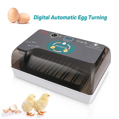 Homdox Egg Incubator