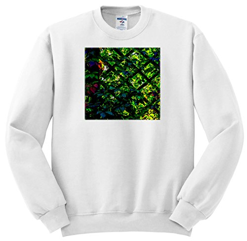 3dRose Alexis Photography - Autumn - Green Virginia Creeper at Sunset - Sweatshirts - Youth Sweatshirt Small(6-8) - Small Flora Plate Set