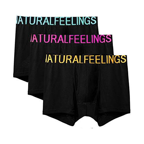 Dream Catcher Mens Underwear Boxer Briefs Underwear Men Pack Boxer Briefs with Fly (We Ll Be Right Back After These Messages)