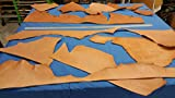 Veg-Tann/Harness/Bridle Full Grain Leather Natural, Bundle #12/10 oz +