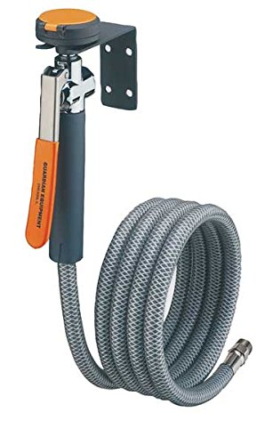 Guardian G5025 Metal Single Head Drench Hose, Wall Mount, 8'
