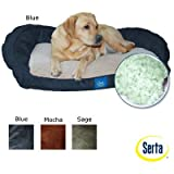 Bolster Memory Foam Pet Bed Color: Green, My Pet Supplies
