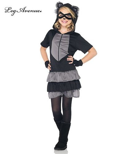 Rascal Raccoon Costume - (Little Rascals Halloween Costumes)
