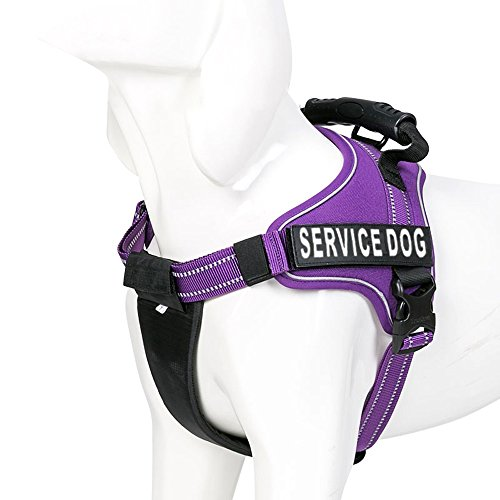 Chais Choice Service Dog Vest Harness Best with 2 Reflective Service Dog Patches. Matching 3M Reflective Leash Available. See Sizing Chart at Left! (Medium, Purple)