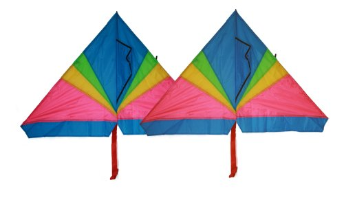 Rainbow delta kite  46 inch x 28 inch with long tails with f