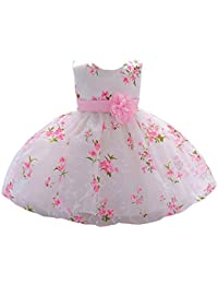 Baby Girl Dress Formal Christening Baptism Gowns Pageant Dress Toddler 052efab7009